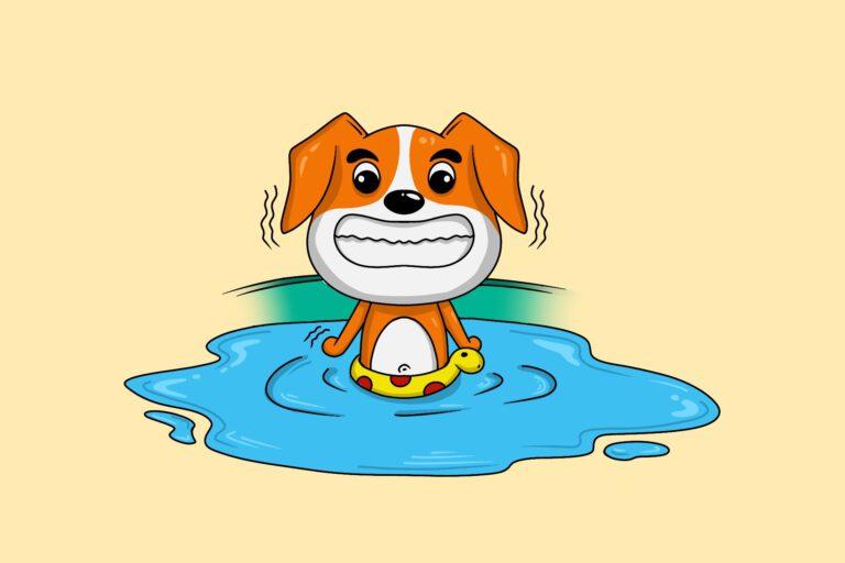 water te koud voor hond