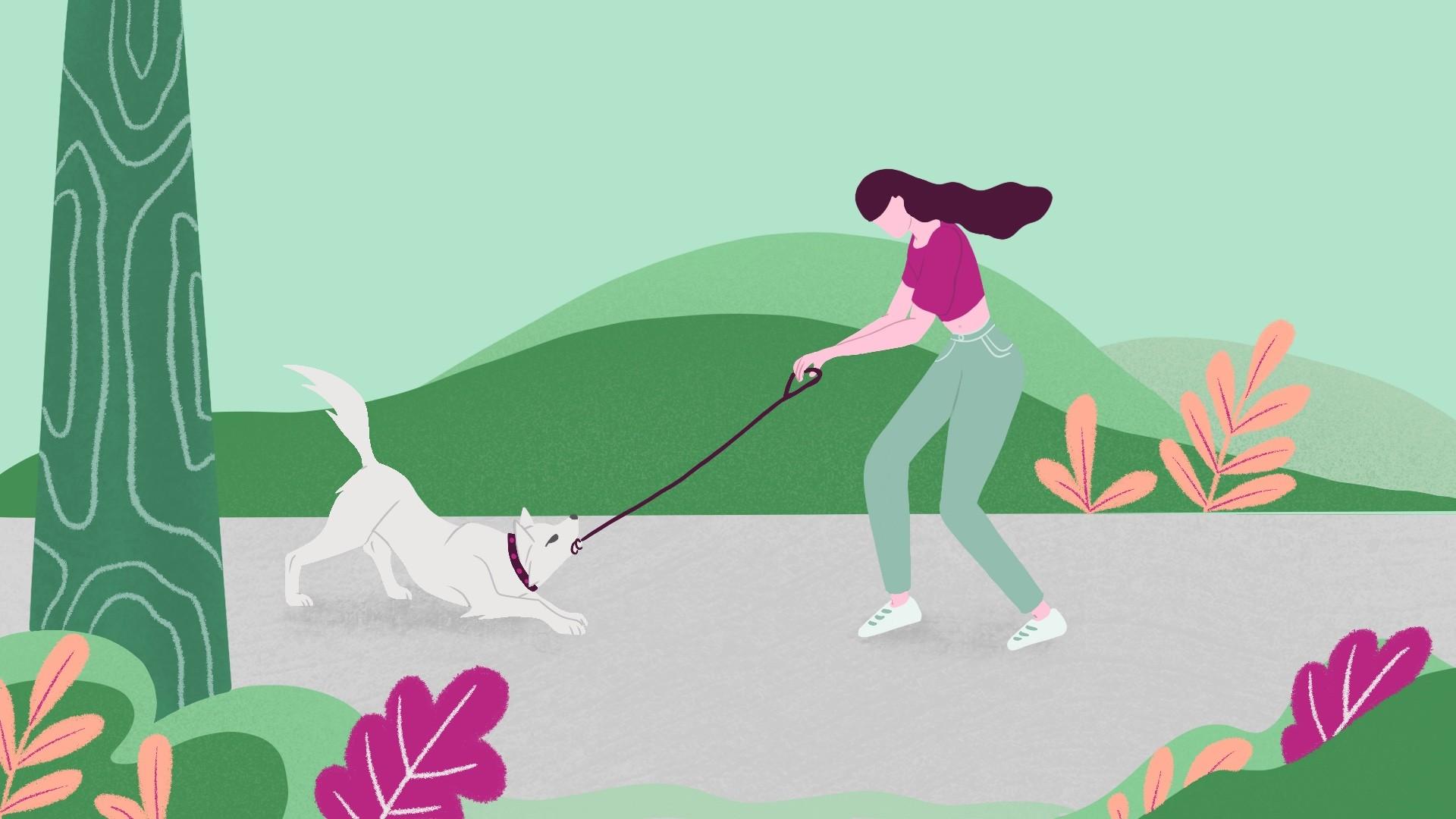Wat te doen als een hond zijn baas negeert