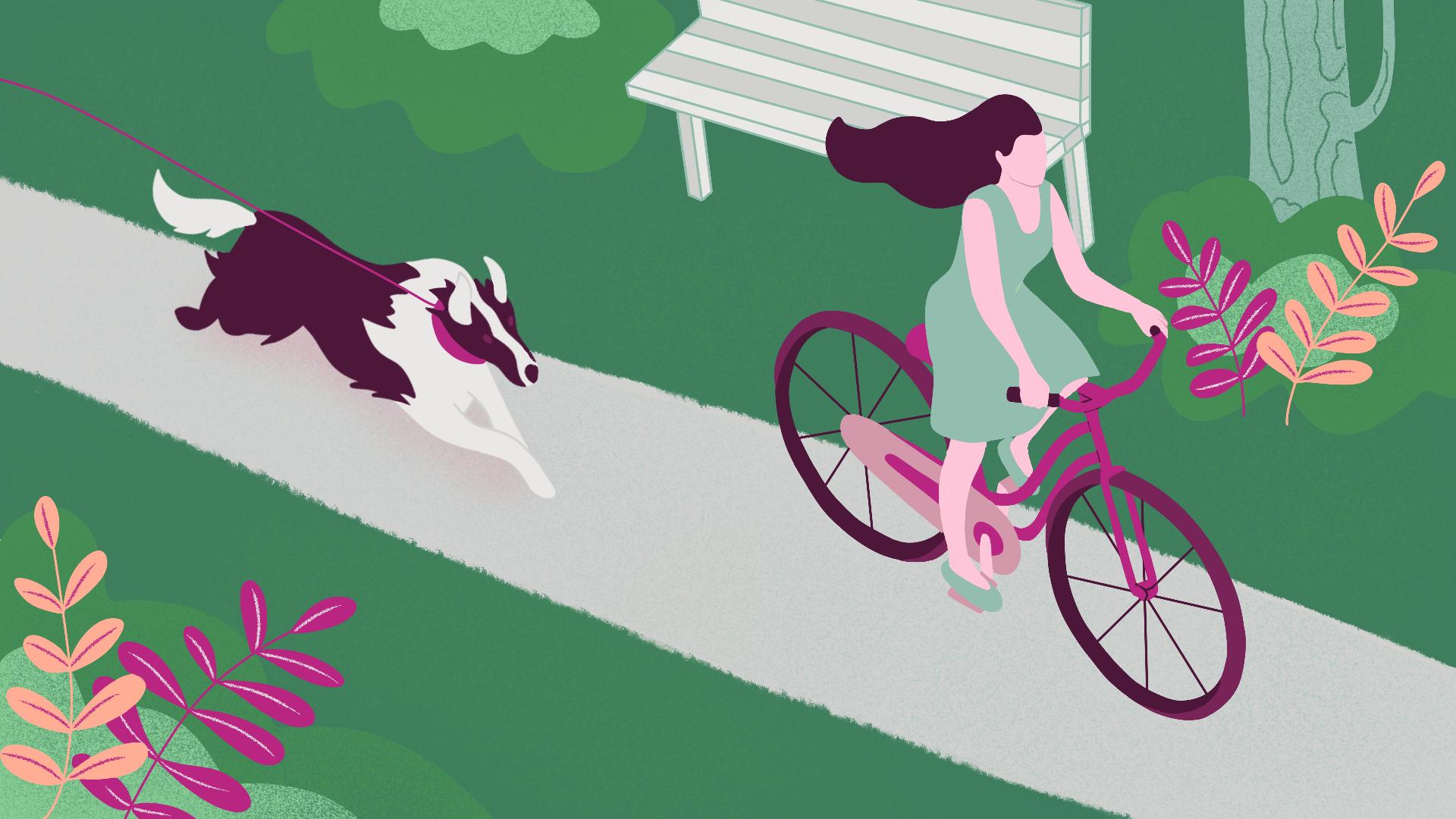 Hoe kun je voorkomen dat je hond achter fietsen aangaat